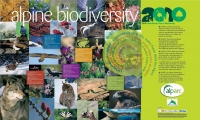 Alpine biodiversity - The Colors of Life, our Future in the Alps
